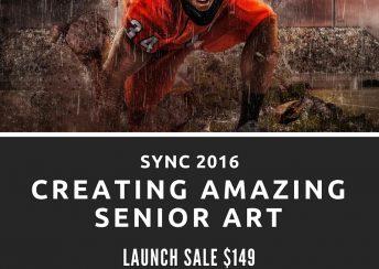 SturDaVinci Art Tools   Sync 2016 Creating Amazing Senior Art