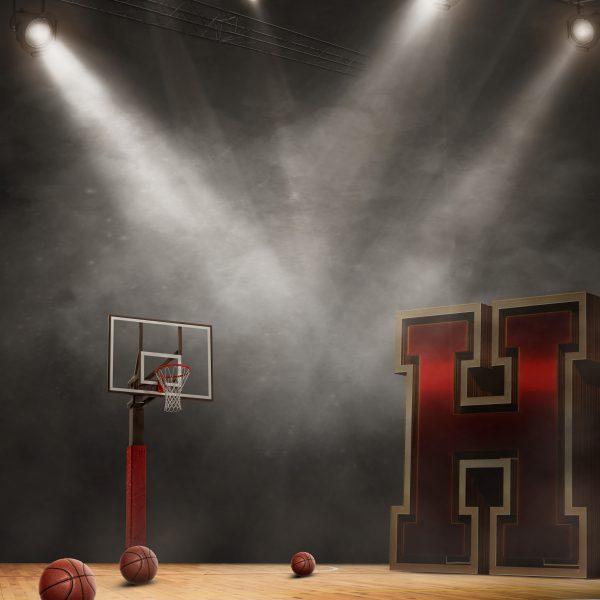 Basketball Idol 2018_ 24×30
