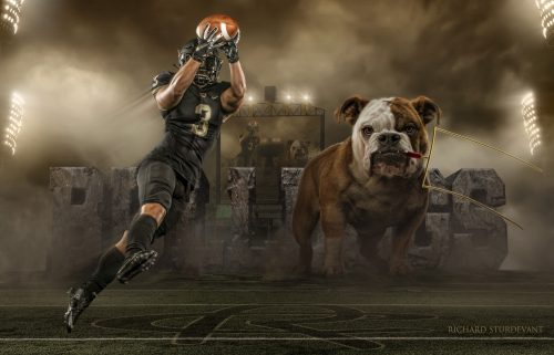 Bulldog Field Template PSD Background